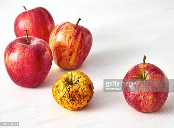 four fresh red apples and a shrivelled one on white wood - petit groupe d'objets photos et images de collection