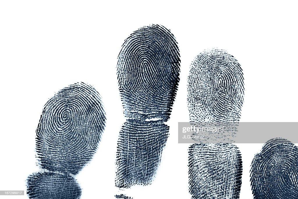 Four full length finger prints on white paper : Stock Photo