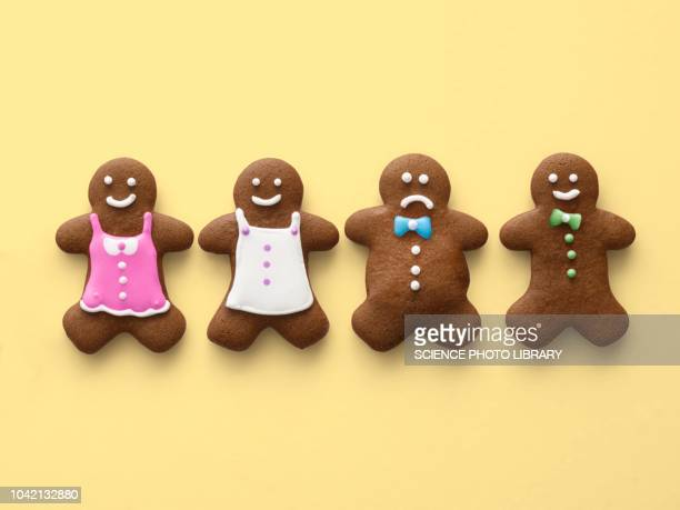 four gingerbread men and women - gingerbread men stock pictures, royalty-free photos & images