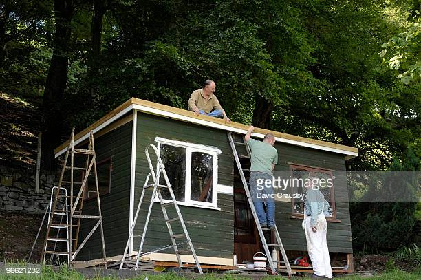 Four Ladders, Three Men and a Shed