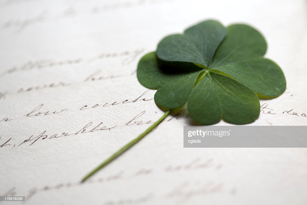 Four Leaf Clover On Antique Writing Stock Photo Getty Images