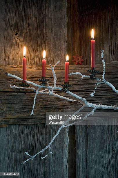 Four lighted Advent candles on twig in front of wooden wall
