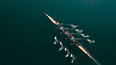 Four male athletes sculling on lake in sunshine