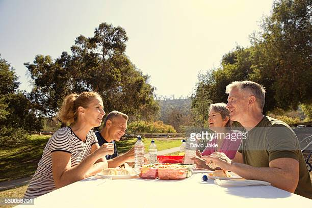 Four mature adult friends having a picnic lunch in park
