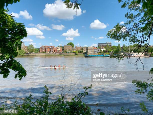 four men rowing on river thames - only men stockfoto's en -beelden