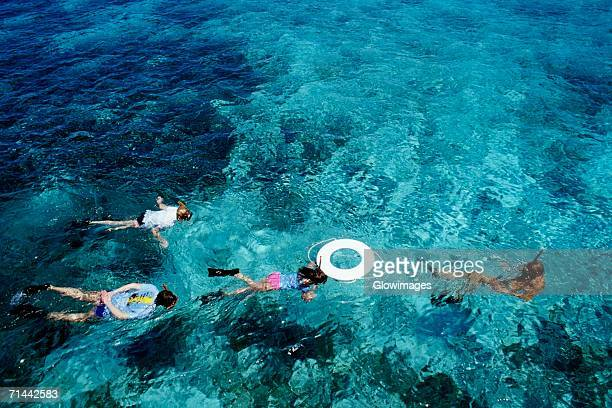 Four people scuba diving, St. Croix, Virgin Islands