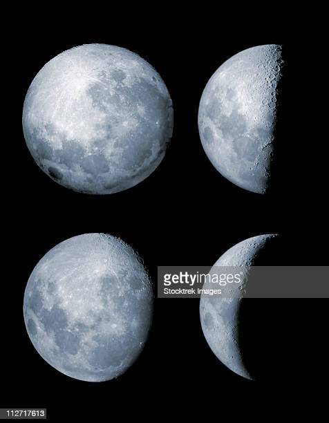 Four phases of the moon.