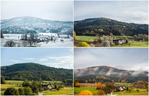 Four seasons of year in european climate in southern Germany as nature concept - snowy winter, blooming spring, rich summer, colorful autumn.