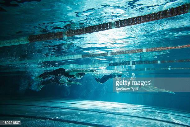 Four swimmers underwater on swimming pool