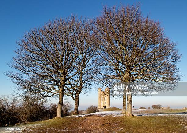 four trees - worcestershire stock photos and pictures