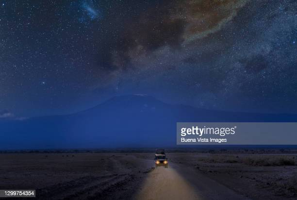 four wheel drive in a safari at night - night safari stock pictures, royalty-free photos & images