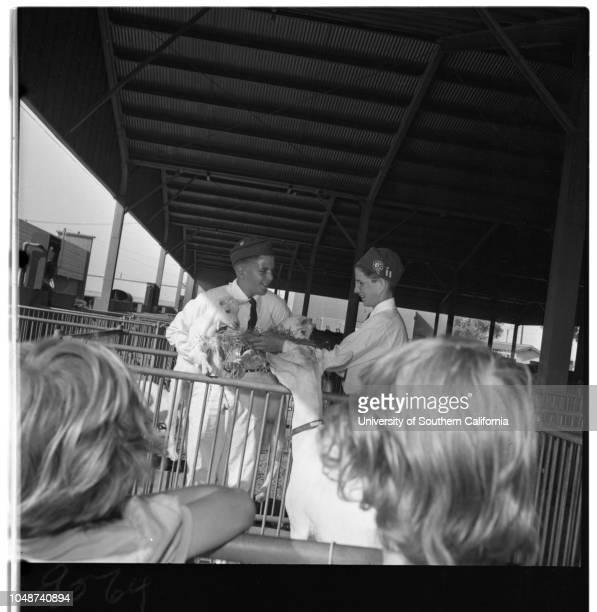 FourH Club Fair in Pomona 04 May 1952 Diann Ostrander 12Jerry Fifield 12Denny Maurer 11Ernest Schilling 12George Schilling 10Raymond Cane 12Jimmy...