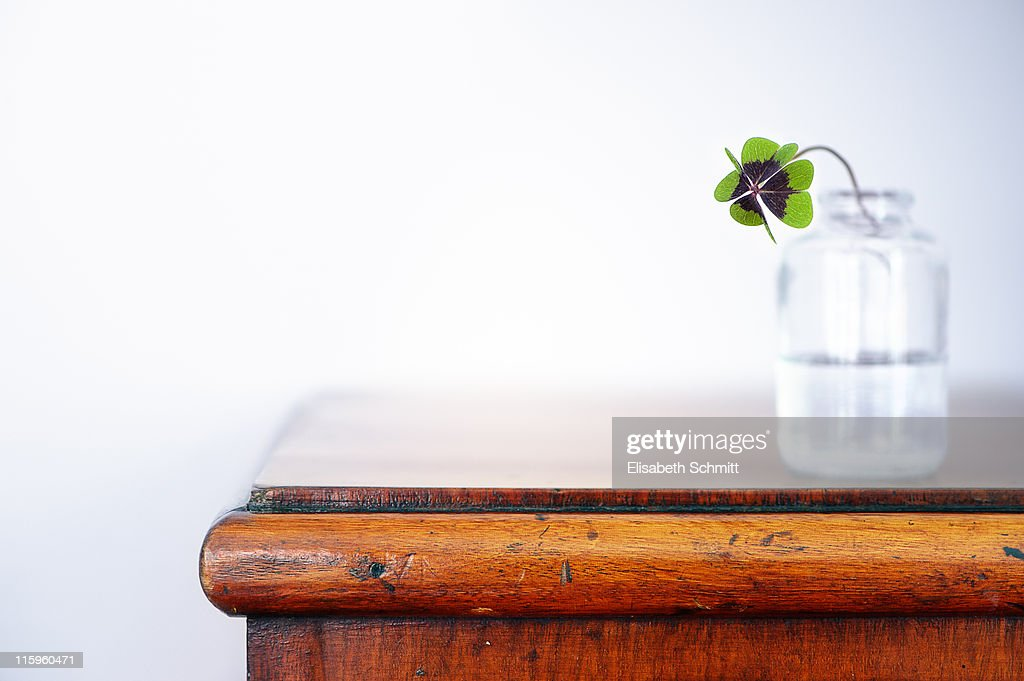 Fourleaf cloverin vase on dresser : Stock Photo