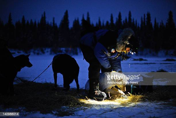 Fourtime Iditarod champion Martin Buser prepares his team to leave the checkpoint in Nikolai Alaska during the Iditarod Trail Sled Dog Race on...