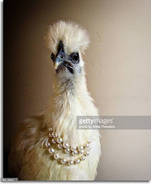 Fowl with a Pearls Necklace