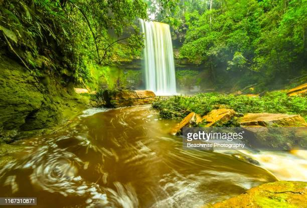 fowzi falls, maliau basin , sabah, malaysian borneo - island of borneo stock pictures, royalty-free photos & images