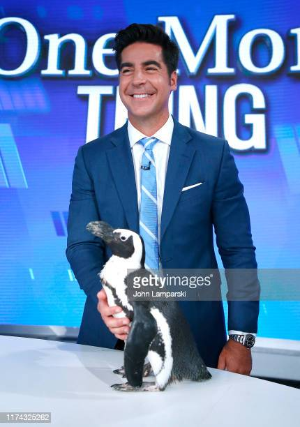 Fox cohost of The Five Jesse Watters welcomes Columbus Zoo for Animals Are Great Segment at Fox News Channel Studios on September 12 2019 in New York...