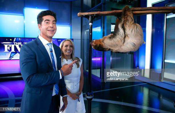 Fox cohosts of The Five Jesse Watters and Dana Perino welcome Columbus Zoo for Animals Are Great Segment at Fox News Channel Studios on September 12...