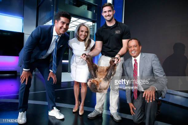 Fox cohosts of The Five Jesse Watters Dana Perino and Juan Williams welcome Columbus Zoo for Animals Are Great Segment at Fox News Channel Studios on...