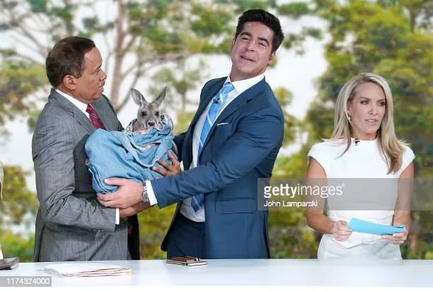 Fox cohosts of The Five Juan Williams Jesse Watters and Dana Perino welcome Columbus Zoo for Animals Are Great Segment at Fox News Channel Studios on...