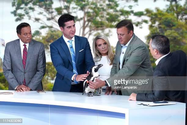 Fox cohosts of The Five Katie Pavlich Juan Williams Jesse Watters Dana Perino Dana Perino Greg Gutfeld and guest welcome Columbus Zoo for Animals Are...