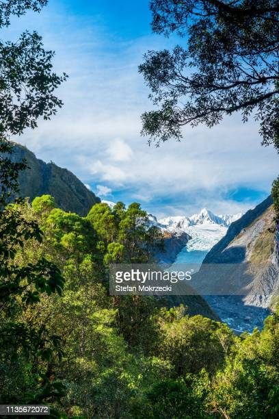 fox glacier, south island, new zealand. - national park stock pictures, royalty-free photos & images