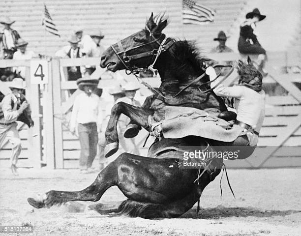 Fox Hastings cowgirl and trick rider being thrown by 'Undertow' one of the meanest horses at the first annual Los Angeles Rodeo where the photo was...