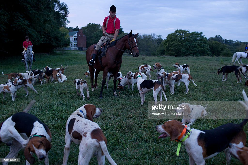 A fox hunting club from Maryland prepares for a morning hunt