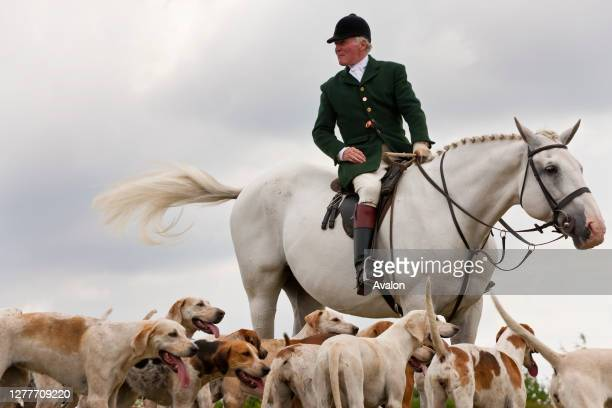 Fox hunting. Horseman & hounds. Gloucestershire. UK.
