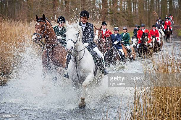 fox hunting # 3 xxxl - fox hunting stock pictures, royalty-free photos & images