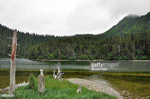 fox island landscape - aleutian islands ストックフォトと画像