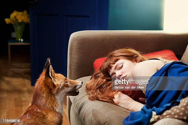 fox looking at sleeping woman on sofa. - fairytale stock pictures, royalty-free photos & images