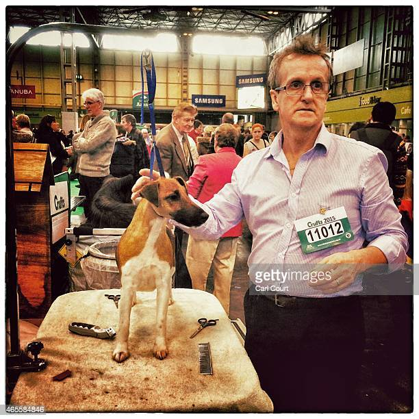 A Fox Terrier is groomed on the third day of Crufts dog show at the National Exhibition Centre on March 7 2015 in Birmingham England First held in...