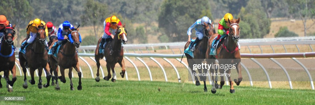 Ararat Turf Club Race Meeting