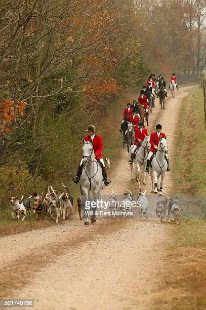 Foxhunters Riding Down Road