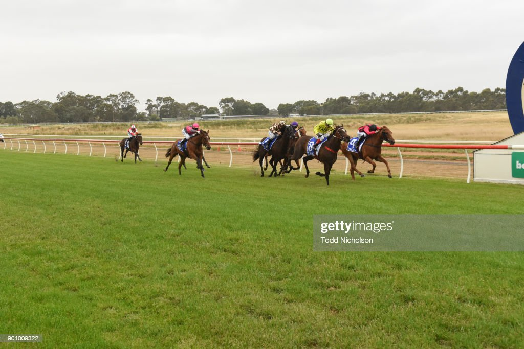 Foxlago ridden by Dean Yendall wins the TAC SV 3YO Maiden Plate at Hamilton Racecourse on January 12, 2018 in Hamilton, Australia.