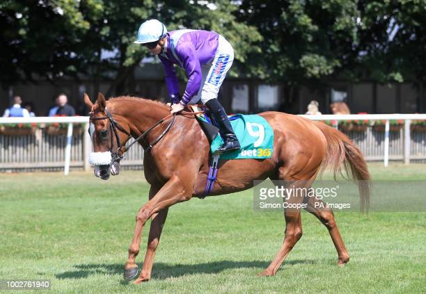 Foxtrot Lady ridden by David Probert goes to post