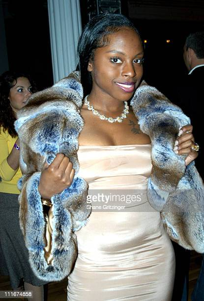Foxy Brown during FICA Fur Fashion Show 2004 at The Puck Building in New York City New York United States
