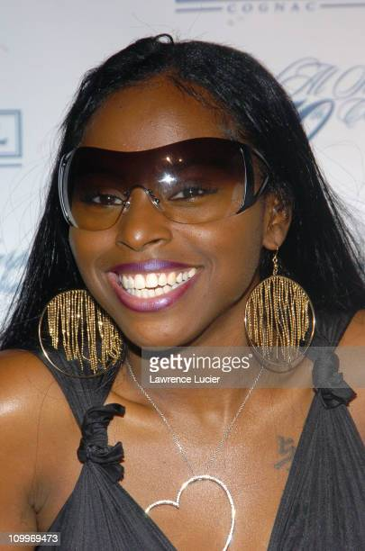 Foxy Brown during Rev Al Sharpton's 50th Birthday Party at Milieu in New York City New York United States