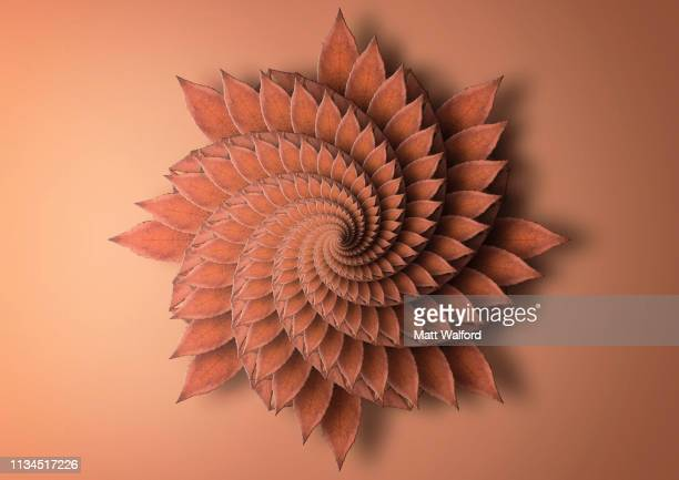 fractal image of maple leaf - spiral stock pictures, royalty-free photos & images