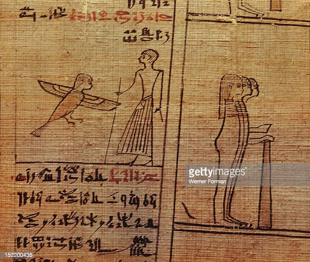 A fragment of a funerary papyrus of Kahapa with a text from the Book of the Dead written in hieratic script To the left is a sketch of a ba bird...