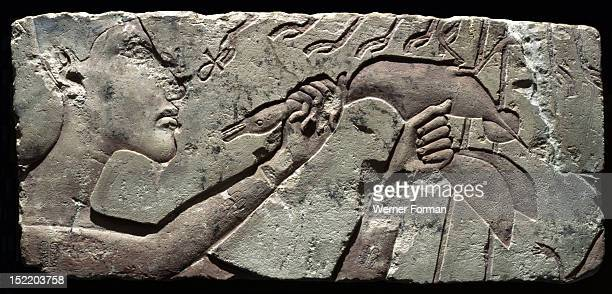 A fragment of a relief King Akhenaten offers a duck for the Aten The small cartouches on the kings arms bear Atens name Such reliefs come from the...