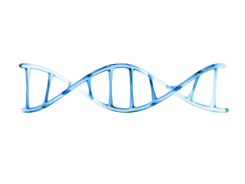 fragment of human DNA molecule, 3d illustration isolated on whit 588986034