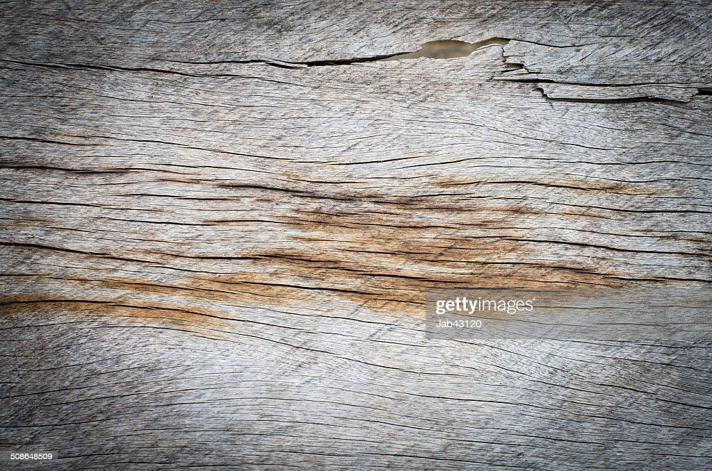 Fragment of old wood wall with the gnarls : Stock Photo