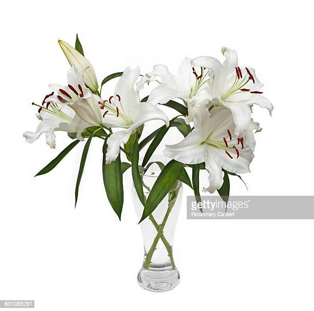 Fragrant white lilies in glass vase on white.