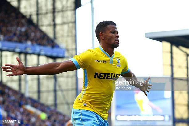 Fraizer Campbell of Crystal Palace celebrates after scoring his team's second goal uring the Barclays Premier League match between Everton and...