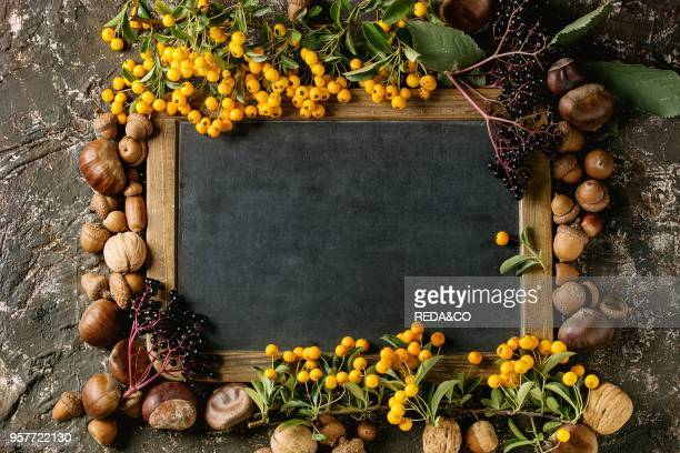Frame from autumn berries leaves and nuts with empty vintage chalkboard over brown concrete background Top view with space for text Fall harvest...