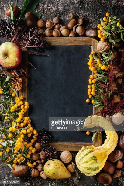 Frame from autumn berries pumpkin leaves and nuts with empty vintage chalkboard over brown concrete background Top view with space for text Fall...