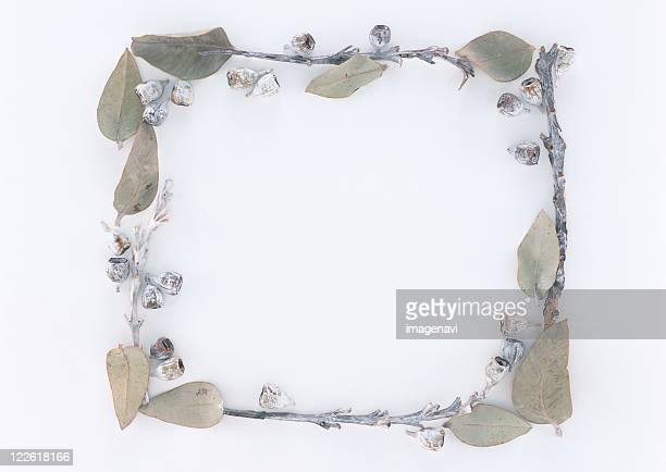 Frame of Branch