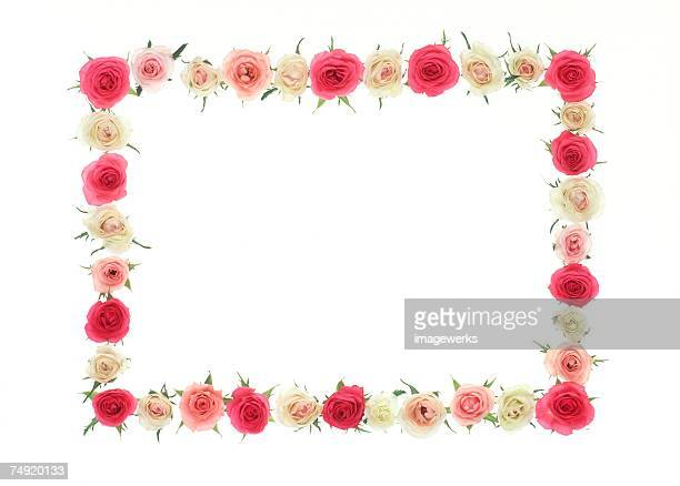 A frame of colorful roses